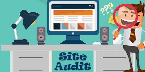 free-pik-site-audit